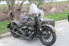 indian ride 006